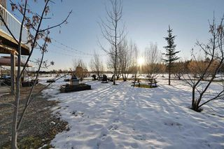 Photo 28: 50003 RR 81: Rural Brazeau County House for sale : MLS®# E4180689