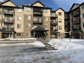Main Photo: 309 10520 56 Avenue NW in Edmonton: Zone 15 Condo for sale : MLS®# E4185834
