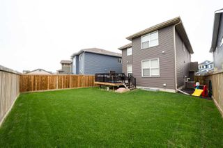 Photo 49: 4369 CRABAPPLE Crescent in Edmonton: Zone 53 House for sale : MLS®# E4198374
