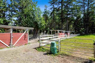 Photo 22: 21113 16 AVENUE in Langley: Agriculture for sale : MLS®# C8033266