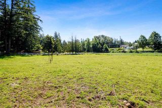 Photo 24: 21113 16 AVENUE in Langley: Agriculture for sale : MLS®# C8033266