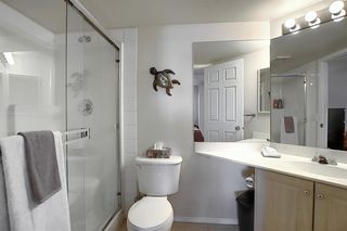 Photo 13: 206 260 Shawville Way SE in Calgary: Shawnessy Apartment for sale : MLS®# A1053737
