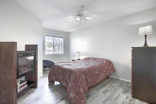 Photo 11: 206 260 Shawville Way SE in Calgary: Shawnessy Apartment for sale : MLS®# A1053737