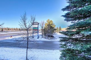 Photo 24: 206 260 Shawville Way SE in Calgary: Shawnessy Apartment for sale : MLS®# A1053737