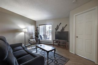 Photo 9: 206 260 Shawville Way SE in Calgary: Shawnessy Apartment for sale : MLS®# A1053737