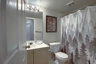 Photo 17: 206 260 Shawville Way SE in Calgary: Shawnessy Apartment for sale : MLS®# A1053737