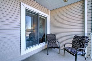 Photo 19: 206 260 Shawville Way SE in Calgary: Shawnessy Apartment for sale : MLS®# A1053737
