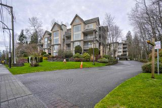 "Photo 1: 505 22233 RIVER Road in Maple Ridge: West Central Condo for sale in ""RIVER GARDENS"" : MLS®# R2433720"