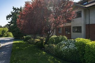 Photo 2: 206 7 W Gorge Rd in VICTORIA: SW Gorge Condo for sale (Saanich West)  : MLS®# 838805