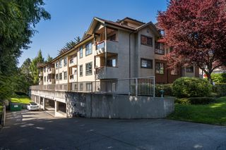 Photo 4: 206 7 W Gorge Rd in VICTORIA: SW Gorge Condo for sale (Saanich West)  : MLS®# 838805