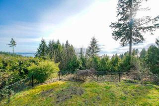 Photo 19: 3906 SOUTHRIDGE Avenue in West Vancouver: Bayridge House for sale : MLS®# R2504769