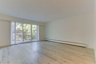 Photo 17: 825 E 8TH Avenue in Vancouver: Mount Pleasant VE Multi-Family Commercial for sale (Vancouver East)  : MLS®# C8035276