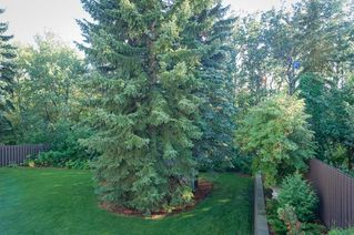 Photo 9: 46 LAFONDE Crescent: St. Albert House for sale : MLS®# E4172754