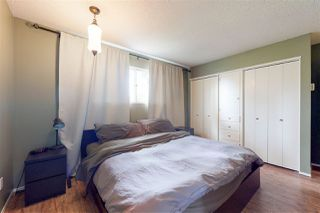 Photo 19: 2434 106A Street in Edmonton: Zone 16 House for sale : MLS®# E4176415