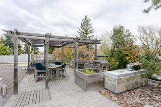 Photo 29: 9120 141 Street in Edmonton: Zone 10 House for sale : MLS®# E4176609