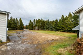 Photo 41: 115 52212 RGE RD 274: Rural Parkland County House for sale : MLS®# E4179578