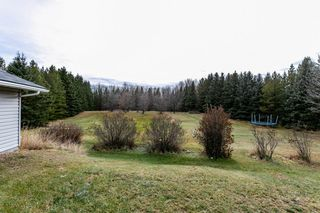 Photo 39: 115 52212 RGE RD 274: Rural Parkland County House for sale : MLS®# E4179578