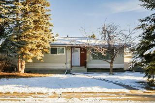 Main Photo: 4623 113A Street in Edmonton: Zone 15 House for sale : MLS®# E4180512