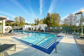 """Photo 17: 4310 13696 100 Avenue in Surrey: Whalley Condo for sale in """"Park Avenue West"""" (North Surrey)  : MLS®# R2435358"""