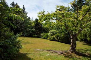 Photo 13: 1440 30TH Street in West Vancouver: Altamont House for sale : MLS®# R2454153