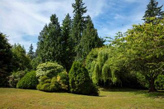 Photo 14: 1440 30TH Street in West Vancouver: Altamont House for sale : MLS®# R2454153