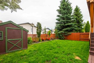 Photo 37: 16 DEERFIELD Place: Spruce Grove House for sale : MLS®# E4204057
