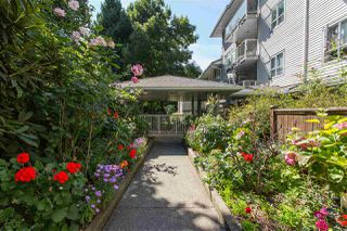"Photo 7: 102 5577 SMITH Avenue in Burnaby: Central Park BS Condo for sale in ""Cottonwood Grove"" (Burnaby South)  : MLS®# R2481228"