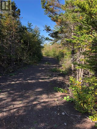 Photo 15: Route 462 Hynes Road in Port au Port East: Vacant Land for sale : MLS®# 1216874