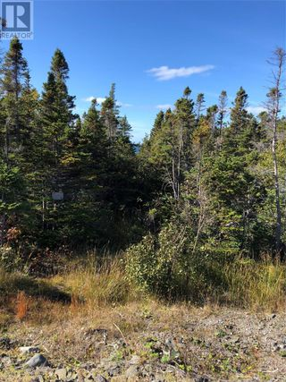 Photo 16: Route 462 Hynes Road in Port au Port East: Vacant Land for sale : MLS®# 1216874