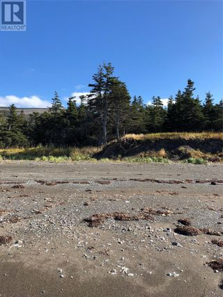 Photo 6: Route 462 Hynes Road in Port au Port East: Vacant Land for sale : MLS®# 1216874