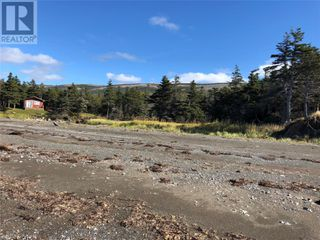 Photo 8: Route 462 Hynes Road in Port au Port East: Vacant Land for sale : MLS®# 1216874