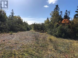 Photo 12: Route 462 Hynes Road in Port au Port East: Vacant Land for sale : MLS®# 1216874