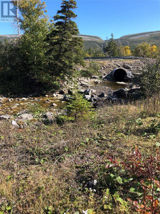 Photo 9: Route 462 Hynes Road in Port au Port East: Vacant Land for sale : MLS®# 1216874