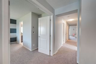 Photo 22: 5330 21A Avenue in Edmonton: Zone 53 House for sale : MLS®# E4222115