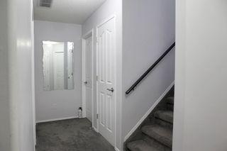 Photo 23: 3116 40 Avenue in Edmonton: Zone 30 House for sale : MLS®# E4173873
