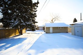 Photo 18: 9519 64 Avenue in Edmonton: Zone 17 House for sale : MLS®# E4184671