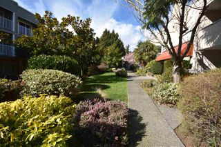 "Main Photo: 151 1440 GARDEN Place in Delta: Cliff Drive Condo for sale in ""GARDEN PLACE"" (Tsawwassen)  : MLS®# R2446934"