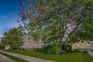 "Photo 1: 312 15313 19 Avenue in Surrey: King George Corridor Condo for sale in ""Village Terrace"" (South Surrey White Rock)  : MLS®# R2494075"