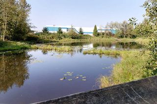 "Photo 27: 211 12565 190A Street in Pitt Meadows: Mid Meadows Condo for sale in ""CEDAR DOWNS"" : MLS®# R2505024"