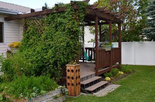 Photo 25: 443 ST. ANDREWS Crescent: Stony Plain House for sale : MLS®# E4178594