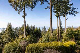 "Photo 33: 3030 DEER RIDGE Close in West Vancouver: Deer Ridge WV Townhouse for sale in ""Deer Ridge"" : MLS®# R2460636"