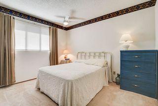 Photo 19: 3424 113 Street in Edmonton: Zone 16 House for sale : MLS®# E4205525