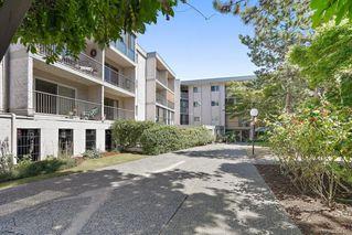 Photo 31: 6 3225 Eldon Pl in : SW Rudd Park Condo for sale (Saanich West)  : MLS®# 850125