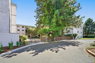 Photo 34: 6 3225 Eldon Pl in : SW Rudd Park Condo for sale (Saanich West)  : MLS®# 850125