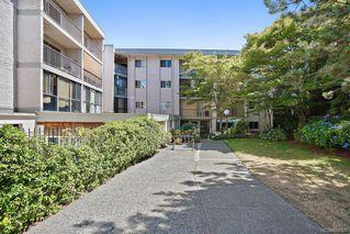 Photo 32: 6 3225 Eldon Pl in : SW Rudd Park Condo for sale (Saanich West)  : MLS®# 850125