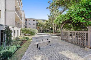 Photo 33: 6 3225 Eldon Pl in : SW Rudd Park Condo for sale (Saanich West)  : MLS®# 850125