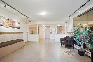 Photo 30: 6 3225 Eldon Pl in : SW Rudd Park Condo for sale (Saanich West)  : MLS®# 850125