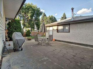 Photo 19: 9507 69A Street in Edmonton: Zone 18 House for sale : MLS®# E4172943