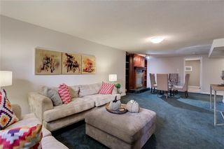Photo 20: 3532 35 Avenue SW in Calgary: Rutland Park Detached for sale : MLS®# C4268473