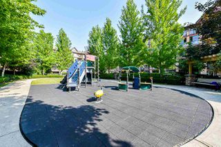 Photo 20: 487 8288 207A STREET in Langley: Willoughby Heights Condo for sale : MLS®# R2374146